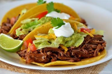 shredded_beef_tacos